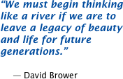 We must begin thinking like a river if we are to leave a legacy of beauty and life for future generations.  -- David Brower